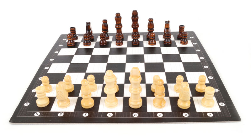 Different Kinds of Chess Sets